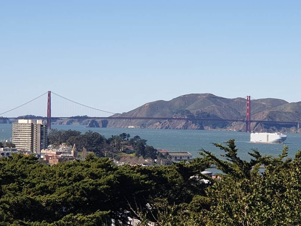view from Coit Tower - San Francisco itinerary